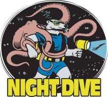 nightdive-LOGO.jpg (49222 bytes)