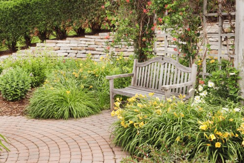 Medium Of Drought Resistant Landscaping