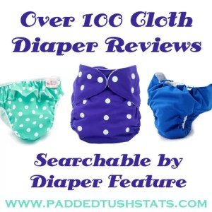 Cloth Diaper Reviews Button copy
