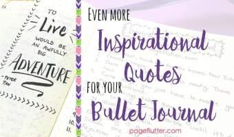 page flutter everyday inspiration