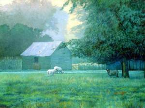 jack-white_pasture