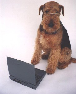 emily-laptop