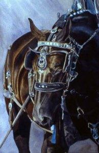 091206_barbara-mcgee-watercolor