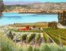 robert-mcmurray-artwork-landscape-vineyard_big