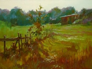 ted-smuskiewicz_fence-and-field