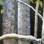 lorraine-duncan-art-spring_big