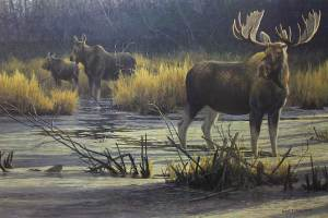 robert-bateman_moose-family