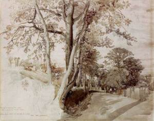 john-ruskin_trees-in-a-lane