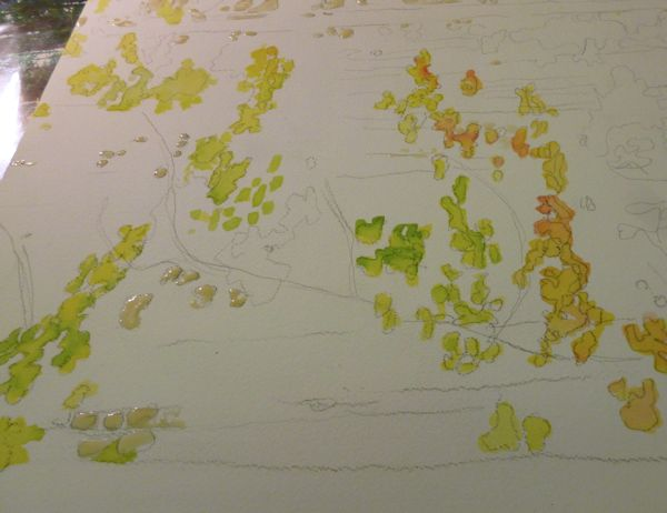 painting the lightest areas