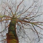 painting a tree with mixed media
