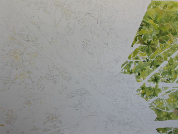 painting leaves with watercolors
