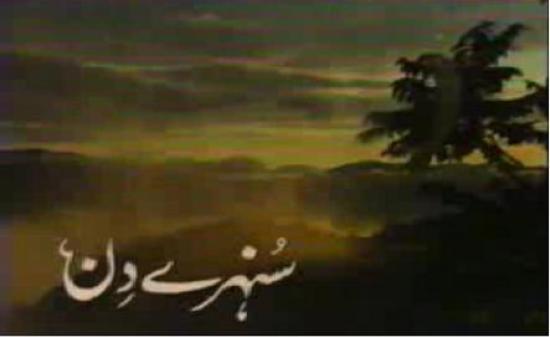 http://i2.wp.com/pakistanidrama.files.wordpress.com/2009/05/sunehrey1.jpg?resize=550%2C337