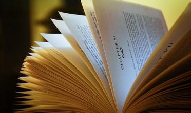 6363562459_7399ee3c3e_Reading-Latino-Books