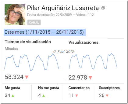 Estadísticas diciembre 2015 - palel.es