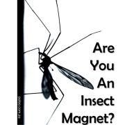Are you an insect magnet Paleo Diet Primal natural insect repellent bugs Mosquito bites spray DEET-min