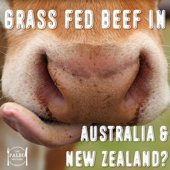 Grass fed beef in Australia and New Zealand-min
