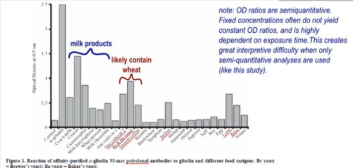 foods that cause gluten cross-reactivity