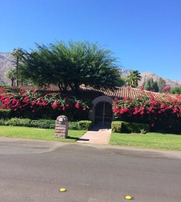 Palm Springs Estate Sale
