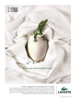 """Image {focus_keyword} Lacoste, una campagna a supporto di """"Save the Logo"""" 35686 20093914279"""