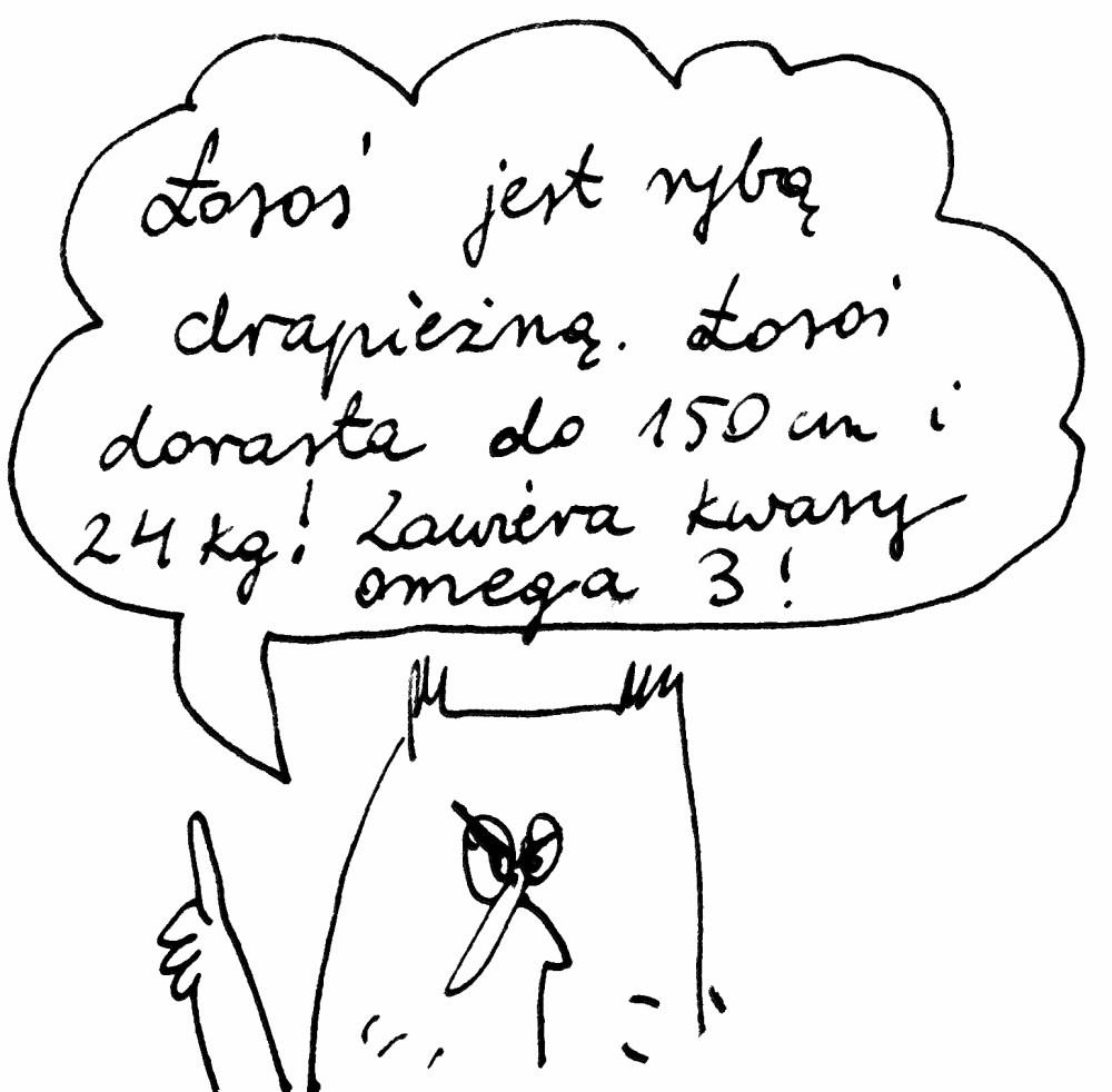ŁOSOŚ PIECZONY W FOLII (3/3)
