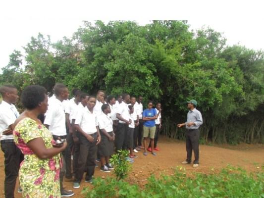 Barerekwa umurima w'ibishyimbo. (Photo/Cypridion)
