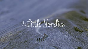 Little Nordics o personetes fent turisme