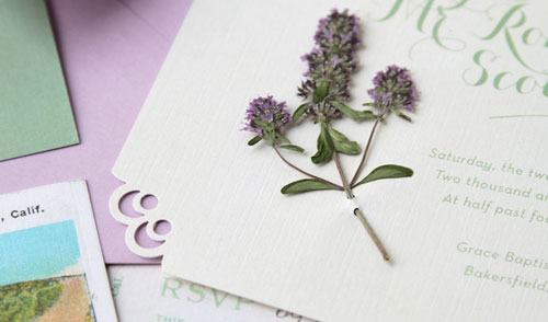 Thyme Invitation Embellishment