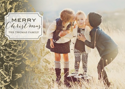 dusted-pinecones-holiday-photo-cards