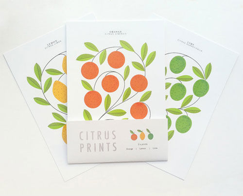 A5 Citrus Prints | Sarah Abbott