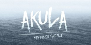Akula Dry Brush Font by Anna Ivanir