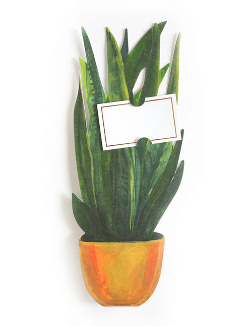 Snake Plant Florever Card from Thimblepress