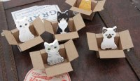 Mini Kitty Box House Sticky Notes