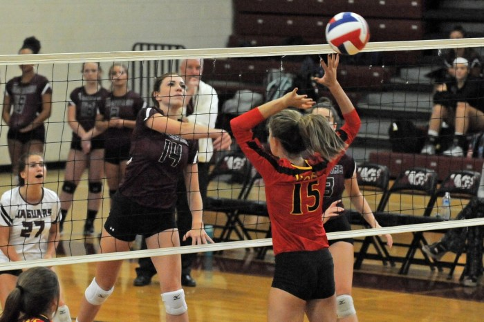 Garnet Valley's first trip to state final 'surreal'