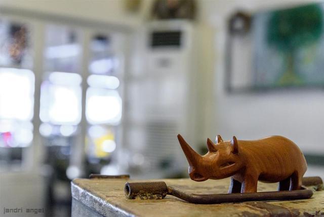 Ρινόκερος (16)