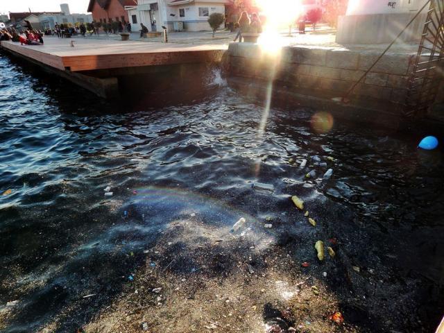ρύπανση στο λιμάνι, θερμαικός