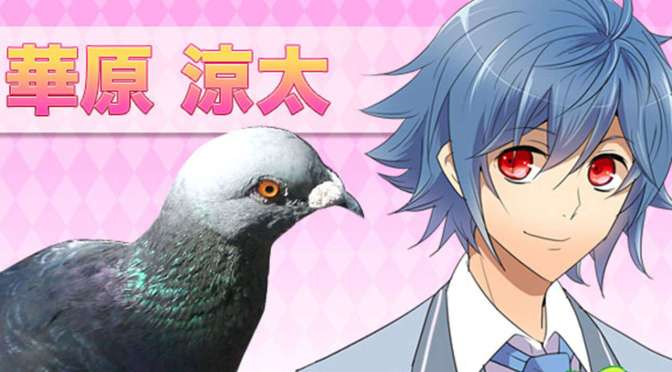 pigeon-dating-sim-hatoful-boyfriend-gets-a-release_s3ry[1]