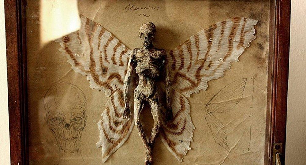 Découverte de squelettes humains avec des ailes...
