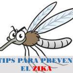 8 Tips Para Prevenir el Zika en Embarazadas