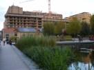 Parc 17 depuis l'extrémité des bassins du Parc Martin Luther King
