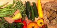 Faire manger des légumes aux enfants : 5 conseils pratiques