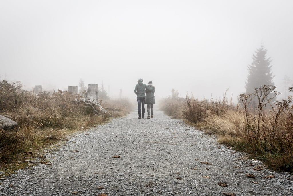 couple bois au loin