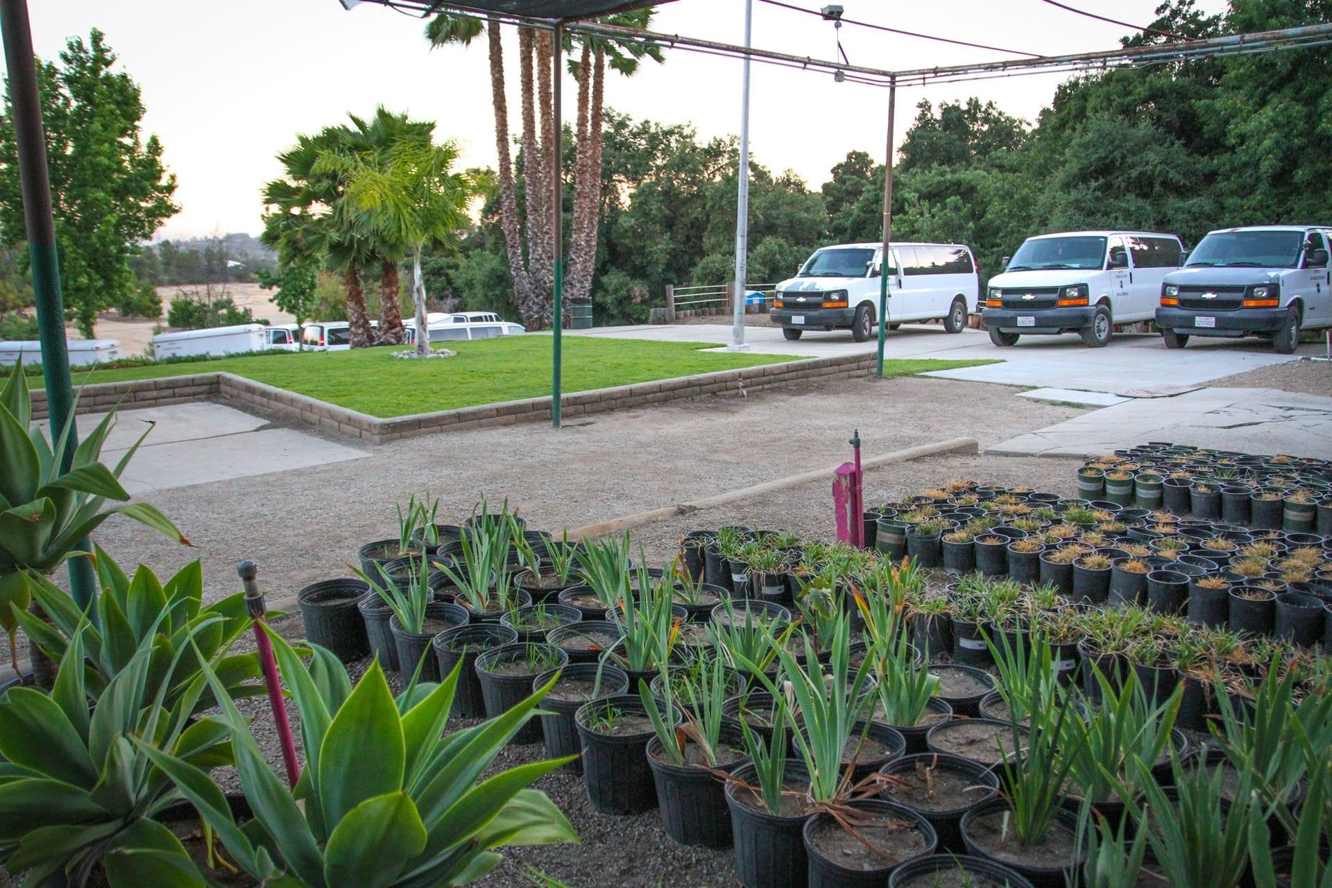 Fullsize Of San Gabriel Nursery