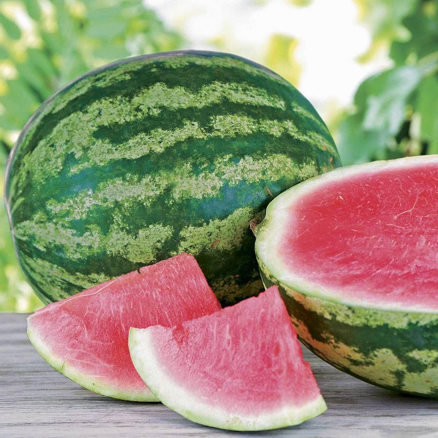 Sleek Triple Crown Hybrid Watermelon Seeds Seeds N Such 2016 Catalog Seeds N Such Reviews houzz-03 Seeds N Such