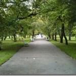 hidden garden of Vojanovy in Malastrana, Prague