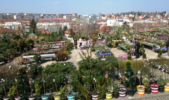 garden centre in central Prague
