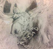drawing-Sandy_grande