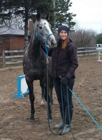 mystique horse with lindsey
