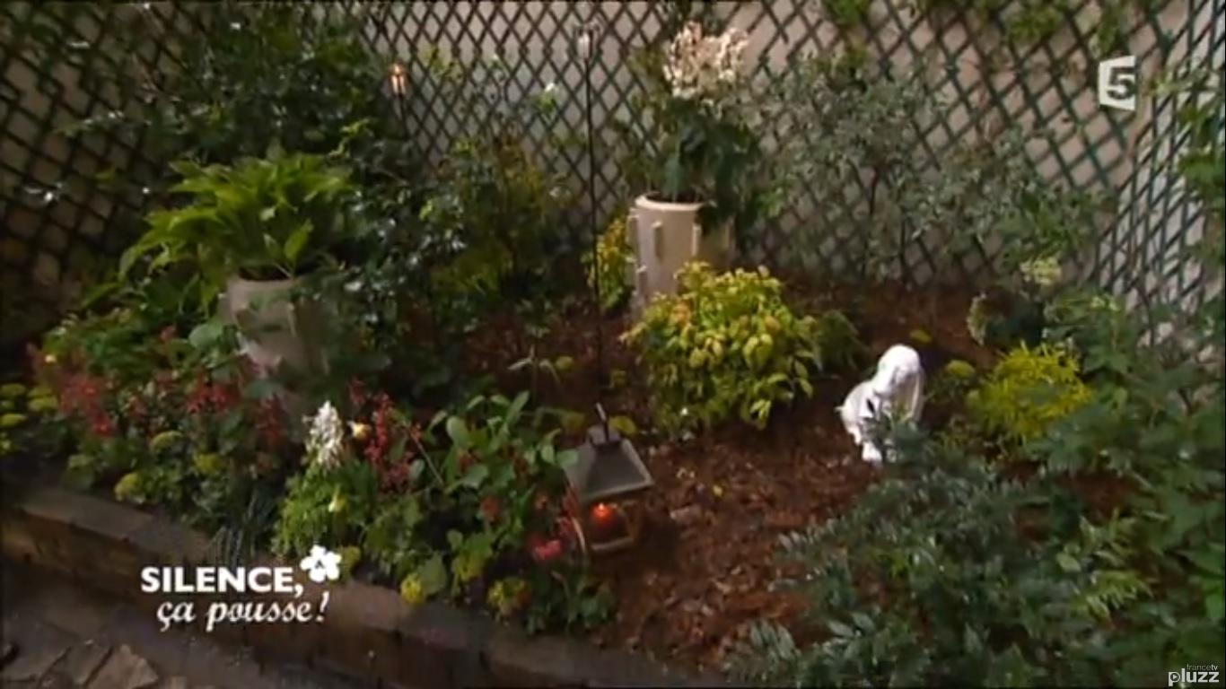 comment aménager un jardin d\'ombre avec des fleurs | PAS DE PANIQUE ...