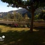 Comment aménager des massifs méditerranéens autour d'une pelouse