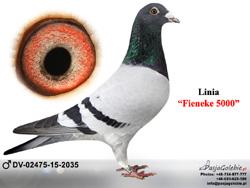 DV-02475-15-2035 MINI